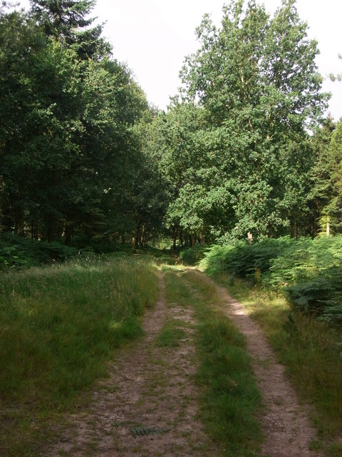 Through Coughton Park