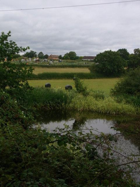 Three different habitats
