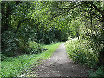 SJ6902 : The Shropshire Canal, Blists Hill by David Dixon