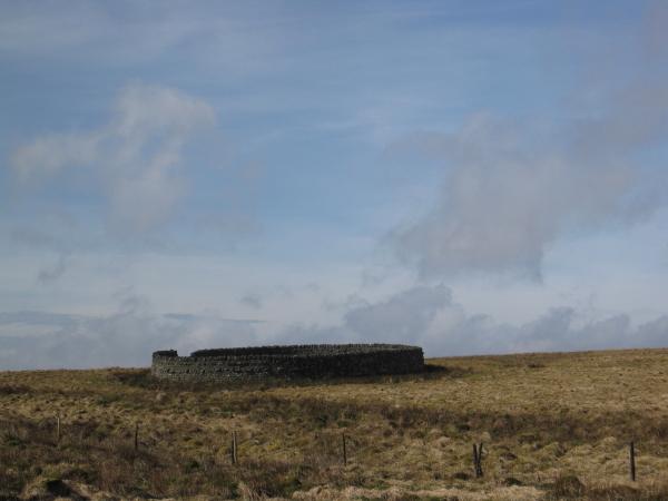 Sheepfold near Watson's Wall