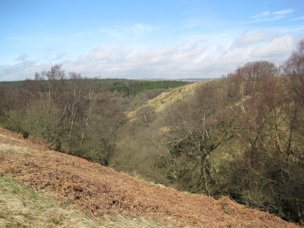 Andre's Cleugh near Cadger Ford