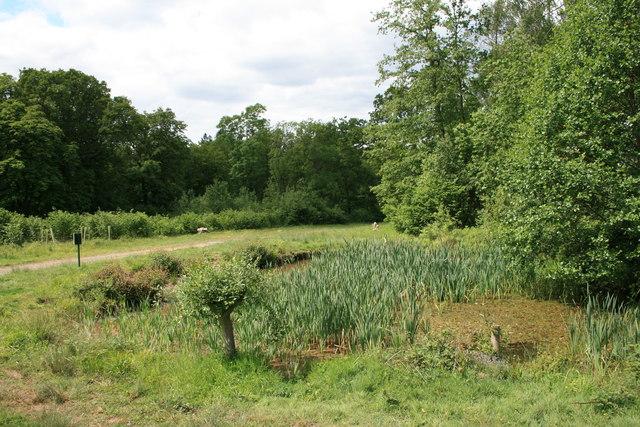 Upper Gravel Pond