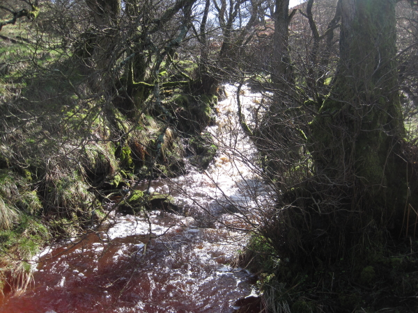 Waterfall, Andrew's Cleugh