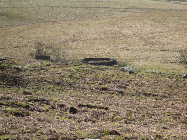 Sheepfold from Whitchester Crags
