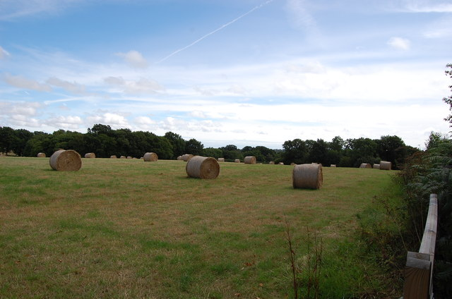 Bales off Stepneyford Lane