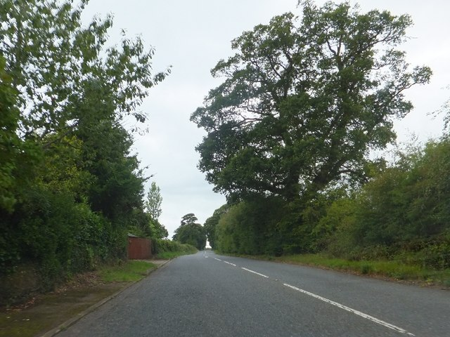 Former A30 west of Fairmile