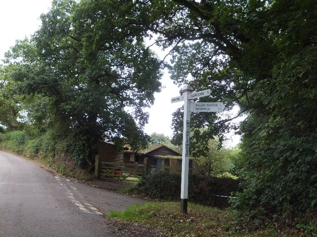 Road junction at Whimple Wood