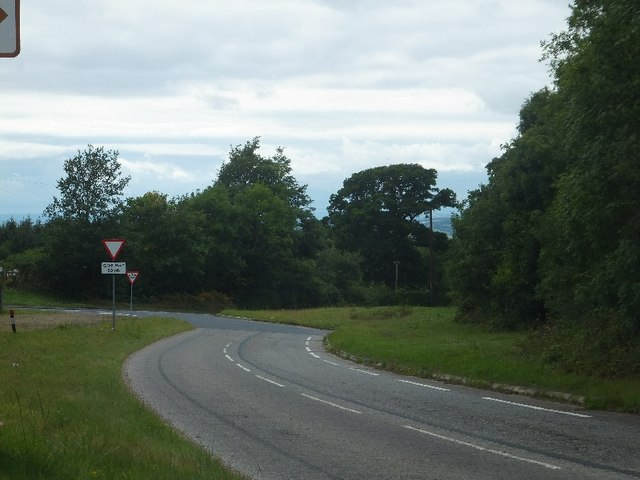 Road junction near Lodge Copse