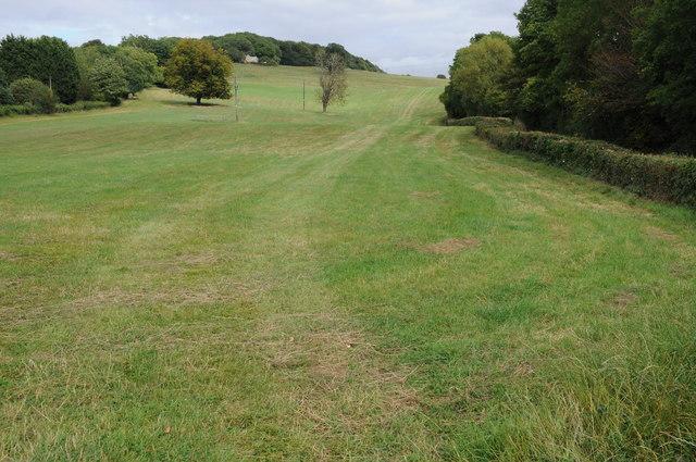 Field near Lower Hewletts Farm