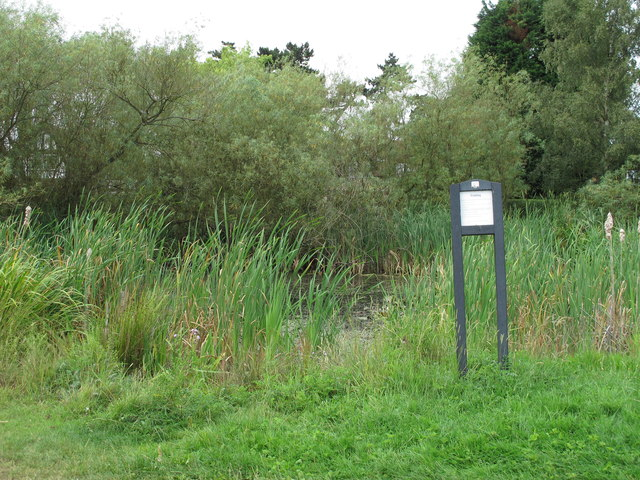 Pond near Mill Plain Bell Common
