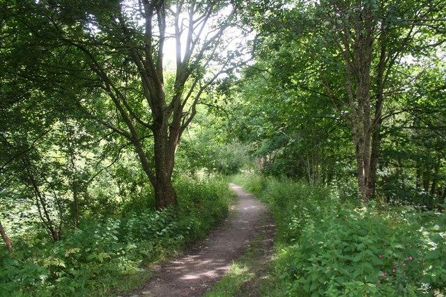 Fiddich Footpath