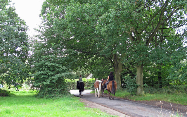 Bell Common Riders
