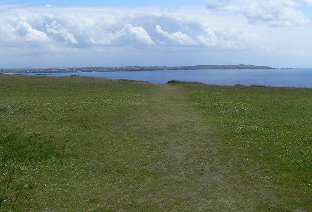 Grassland near Graig Lwyd