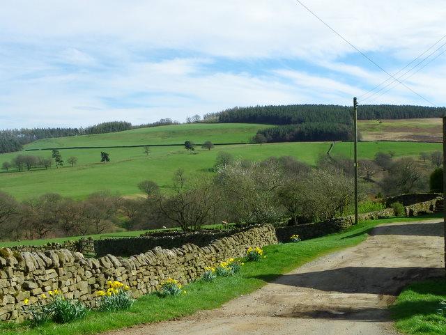 Drive, Leighton Hall Farm