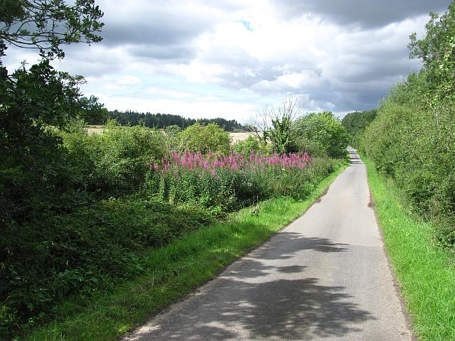 A minor road near Fenwick