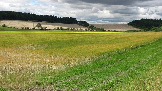 Farmland near Fenwick