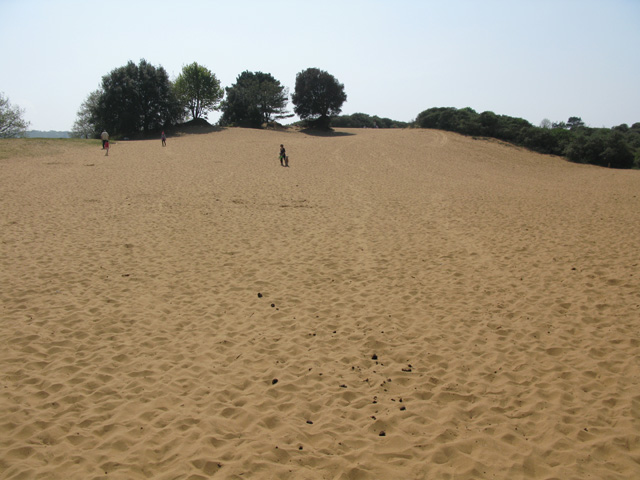 Some of the extensive sand dunes at Merthyr Mawr