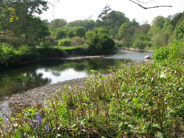 View along the Ogmore River