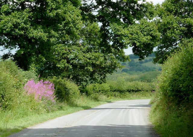 Lane east of  Llwyn-y-Groes, Ceredigion