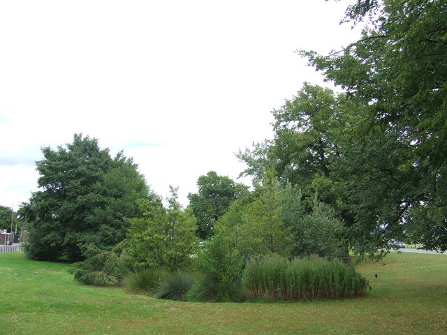 Long Pond, Blackheath