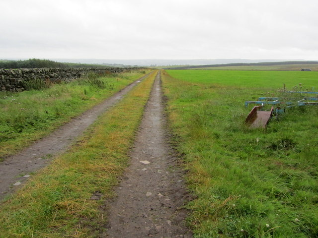 Track leading from Stainburn Forest