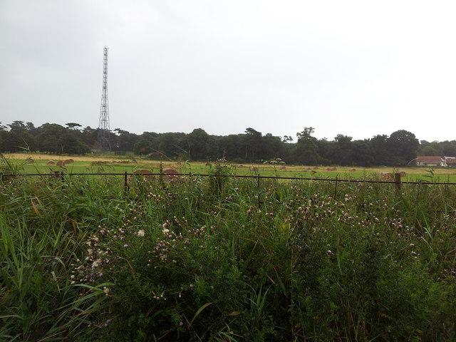Fields and radio transmitter near Bawdsey