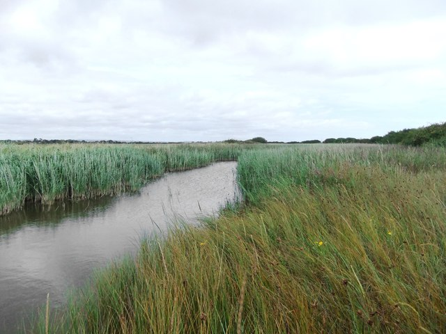 Drainage channel east of Sidlesham Ferry, Pagham Harbour
