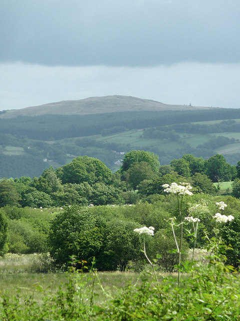 Landscape towards the Teifi valley and Elenydd moorland, Ceredigion