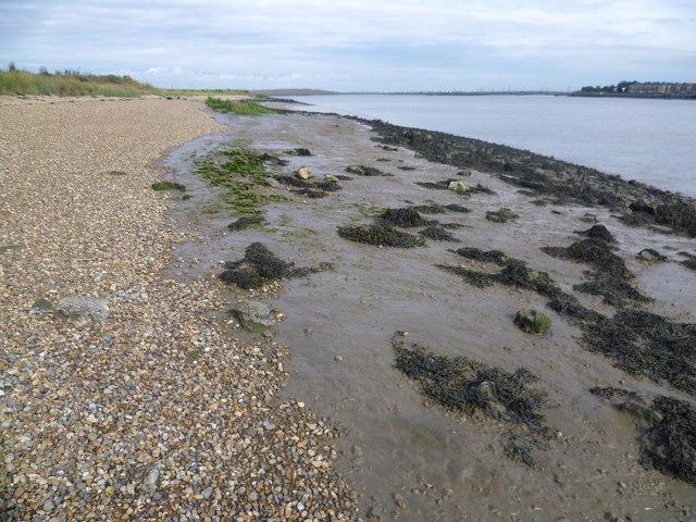 Thames beach at Dartford Marshes