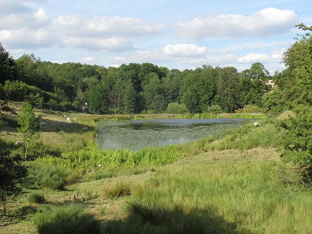 Launde Middle Reservoir
