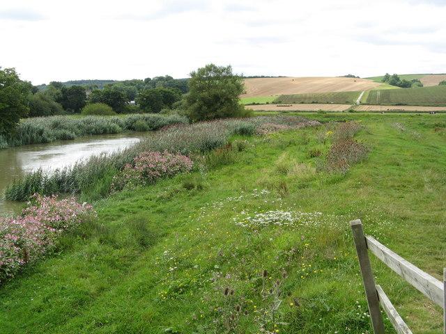 River Arun and meadows