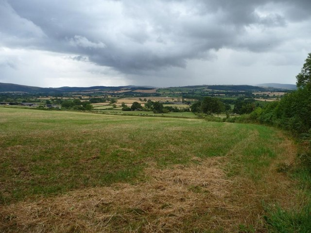Field east of Arbour Lane