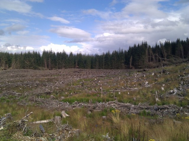 Across cleared timber to remaining stand of timber