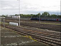 TQ2282 : Old Oak Common - sidings, main line &train by David Hawgood