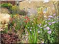 SK8608 : Oakham sensory garden by Stephen Craven