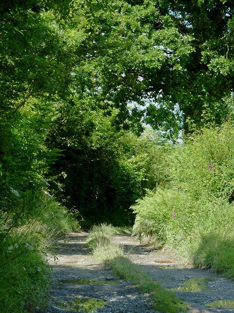 Farm track near  Capel Betws Lleucu, Ceredigion