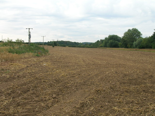 Farmland near Winks Wood