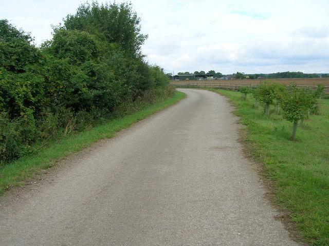 Track (bridleway) towards Hodsock Woodhouse
