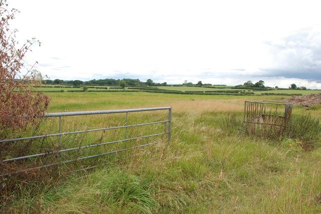 Looking across Pasture Fields, Seighford Road