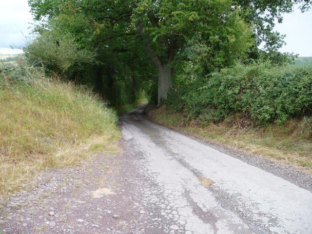 The narrow lane to Walkmill