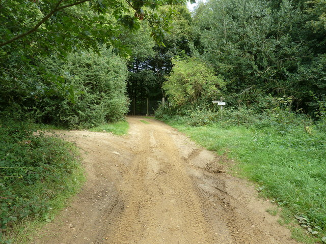 Sandy track at the corner of Weir Wood