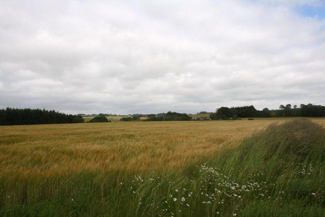 Field of Durno