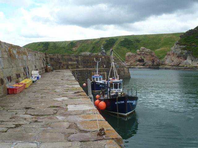 Boats in Cove Harbour