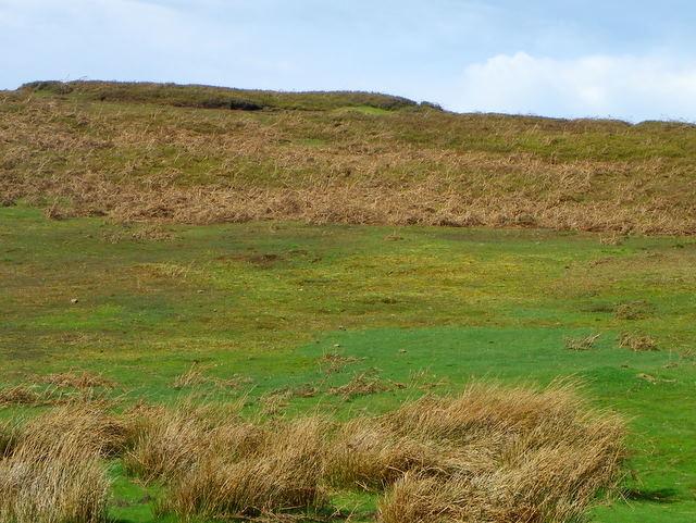 Rough moorland, Pott Moor