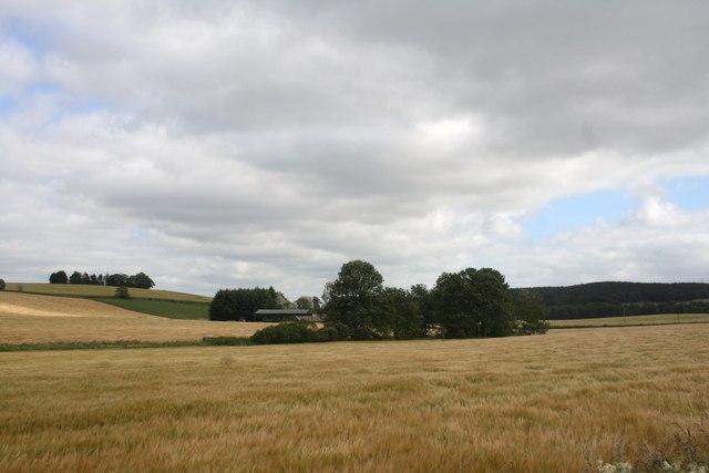 Glenlogie Fields