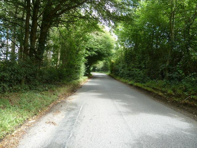 Treemans Road north to Horsted Keynes