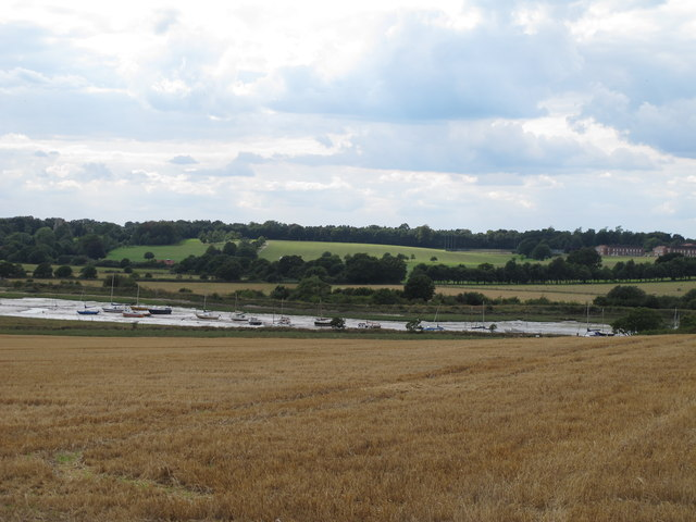 Cornfield and Creek