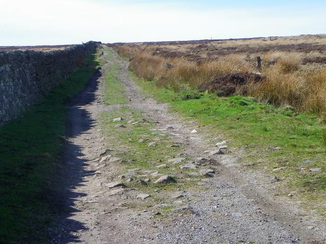 Track, Lofthouse Moor