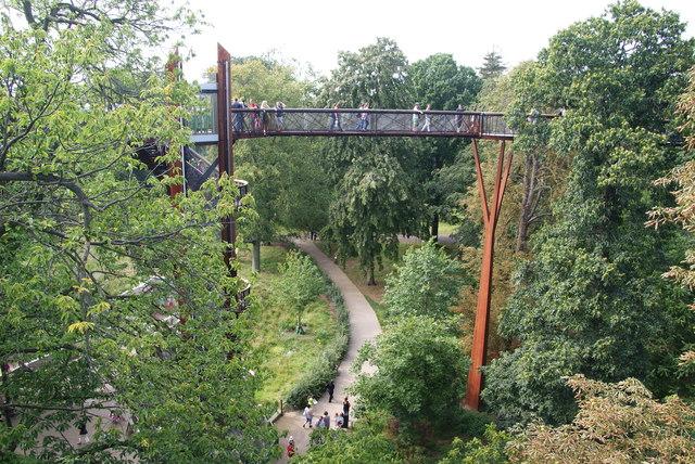 The treetop walkway