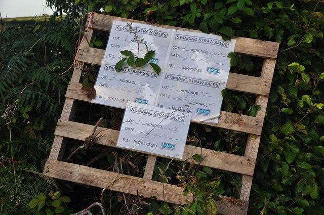 Mid Devon : Standing Straw Sales
